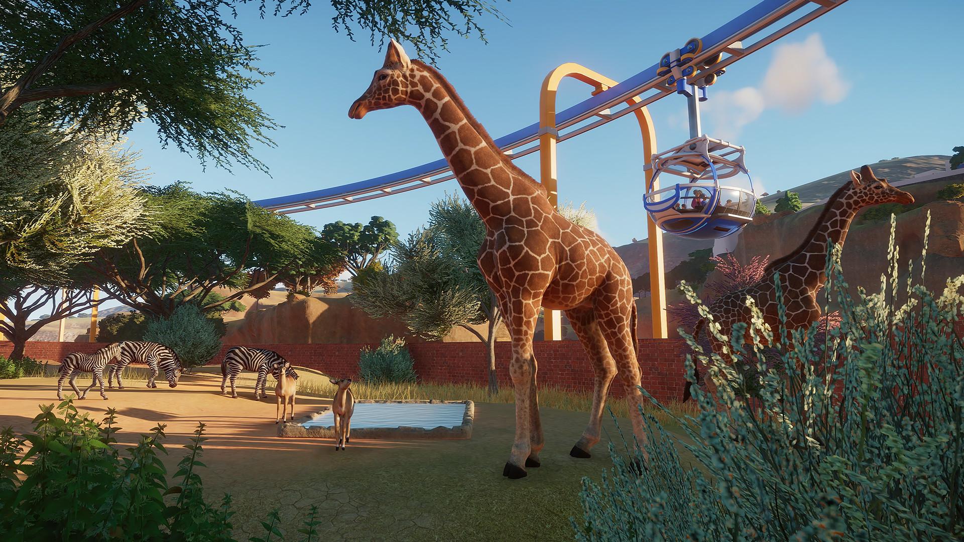 动物园之星插图1